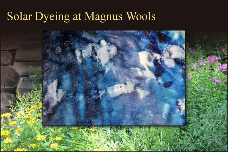 Solar dyeing at Magnus Wools, Peacham, Vermont